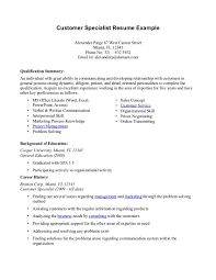 Resume Template Summary For Resume Examples Customer Service Free