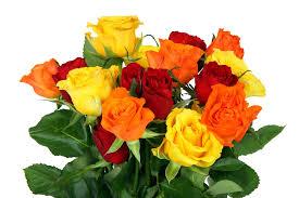 Картинки по запросу Цветы в день рождения девушке картинки