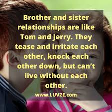 Quotes For Brothers Awesome 48 Cute Brother Sister Quotes Sayings And Messages