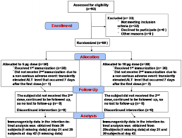 Phase 3 Clinical Trial Flow Chart The Consort Flowchart Of Ev71vac Phase 1 Clinical Trial The