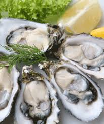 Oyster Identification Chart Oysters Seafood Health Facts