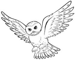 Small Picture Cute Animal Coloring Pages to Print Harry Potter Party