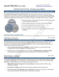 Sample Of Executive Resumes Samples Career Impressions