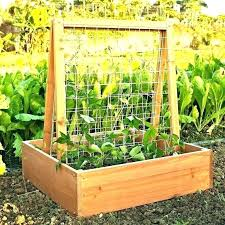 outdoor herb garden planters build box kitchen containers building a starter kit