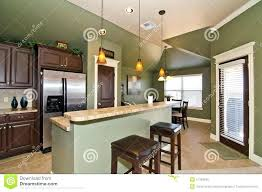 sage green kitchen walls with oak cabinets cupboard paint