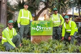 Native Land Design Austin Tx Case Studies
