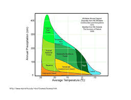 Taiga Temperature Chart Http Www Marietta Edu Biol Biomes Biomes Htm Predict The