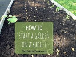 how to start a garden on a budget gardening can seem overwhelming when you consider