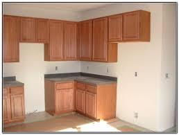 Prefabricated Kitchen Cabinets Prefab Kitchen Cabinets Vs Custom
