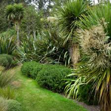 Small Picture Simple 25 Native Garden Ideas Nz Design Ideas Of 110 Best New