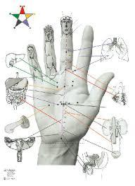 Korean Acupressure Chart Korean Hand Acupuncture