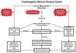 Cardiogenic Shock Intechopen