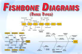 display posters   amatrolfishbone diagrams         free download