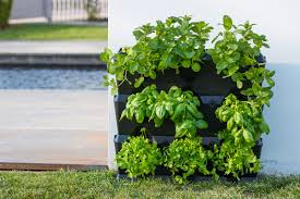 Vertical Kitchen Garden Minigarden Us