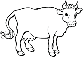 Easy Cute Coloring Pages Of Animals Free Colouring Printable Baby