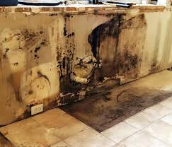 mold in kitchen cabinets mold discovered behind kitchen cabinets mold smell in kitchen cabinets