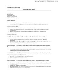 it auditor resume   sales   auditor   lewesmrsample resume  staff auditor resume job application