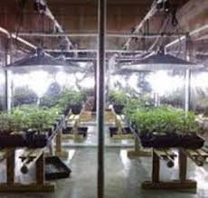 light mover schematics for indoor grow lights planning out your grow equipment