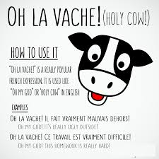 Funny French Quotes
