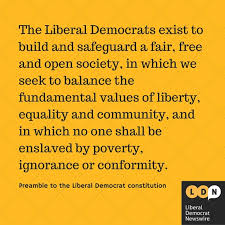 what does it mean to be a liberal democrat today what does it mean to be a liberal democrat today vote for the best essay