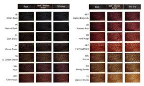 Clairol Professional Hair Color Chart Numbers Thelifeisdream