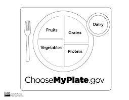 Small Picture MyPlate Coloring Sheet