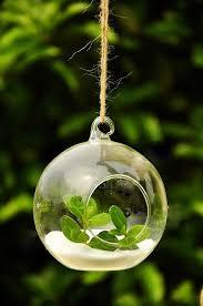 hanging terrarium diy um glass globe wedding centerpieces c