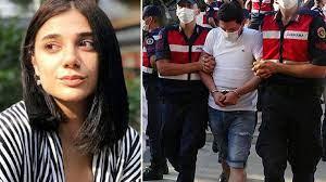 Türkiye'nin kanını donduran Pınar Gültekin cinayetinde flaş gelişme - Son  dakika haberleri