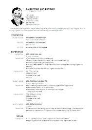 Create Curriculum Vitae Extraordinary Create Pdf Resume Curriculum Vitae Example Resume Samples Create