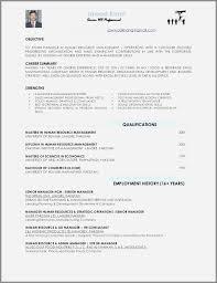 Nestle Cover Letter Lovely Job Application Cover Letter Format