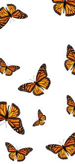 Butterfly Wallpaper Iphone Xr - Novocom.top