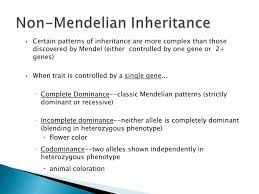 Mendelian Patterns Of Inheritance Simple Decorating Design