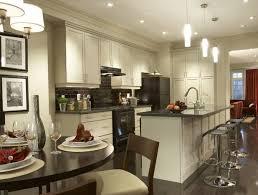 Cabinet Colors for Dark Appliances
