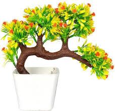 Plant Interior Design New Decorating Ideas