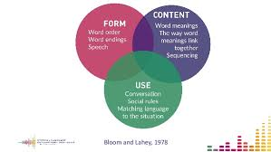Bloom And Lahey Chart Identifying And Supporting Children With Language Difficulties