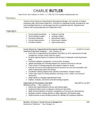 the perfect resume example resume writing resume examples the perfect resume example resume example executive assistant careerperfect organizational development resume example my perfect resume