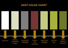 Snot Colour Chart This Is Very Scientific Lung Anatomy