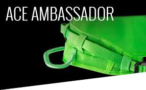 Amazon Com Edelrid Ace Ambassador Climbing Harness