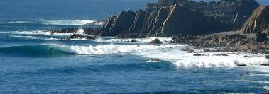 ▷ <b>Extreme</b> Algarve <b>Surf</b>: 1 Offers easily bookable online   2021 ...