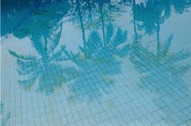 pool water background tumblr. Pools And Palm Trees Pool Water Background Tumblr