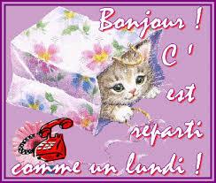 """Résultat de recherche d'images pour """"bon lundi chat"""""""