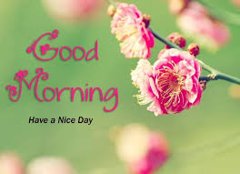 good morning images with nature flower