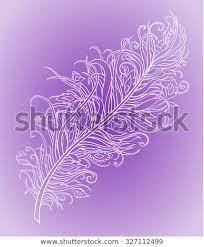 Fancy Patterns Interesting Delicate Transparent Feather Fancy Patterns On Stock Vector Royalty