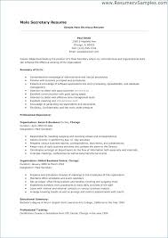 Internal Resume Examples Sales Professional Resume Charming Internal ...