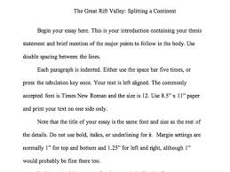 writing a essay tips to write an essay and actually enjoy how do i format an essay english essay writing tipscom