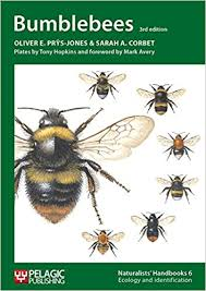 Bee Identification Chart Uk Recommended Reading Bumblebee Conservation Trust