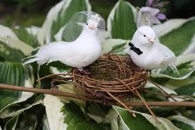 love birds wedding theme 2