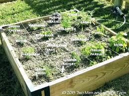 4x8 raised bed vegetable garden layout raised bed vegetable garden layout raised bed vegetable garden garden