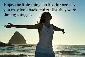 Life Changing Quotes Amazing Life Changing Quotes Enjoy The Little Things In Life For One Day