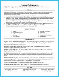 Legal Resume Templates Beauteous Legal Resume Format] 48 Images Homeless Charity Letter Charity